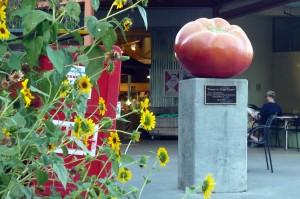 tomato statue in Davis, California, USA