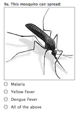 Questionable Mosquito